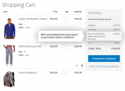 the example of a personalized promotion based on a customer's purchases history