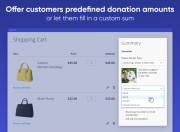 offer donation options that resonate best with your audience