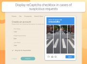 show recaptcha test in cases of suspicious requests
