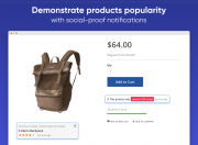 showcase products popularity by displaying recent sales notifications