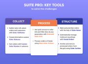 explore a comprehensive management flow